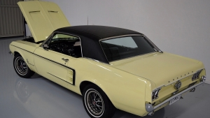 1967 Mustang Coupe Spring Time Yellow