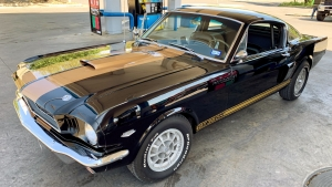 1966 Mustang Hertz GT350 Fastback black and gold